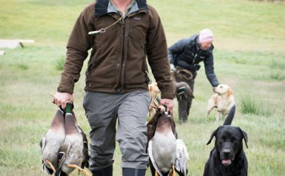 hunting in sweden with dogs