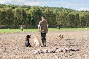 Sweden_Hunting